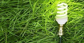 Going Green to Save Green: How Energy Efficiency Can Help Your Bottom Line